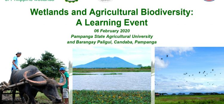 Wetlands and Agricultural Biodiversity: A Learning Event