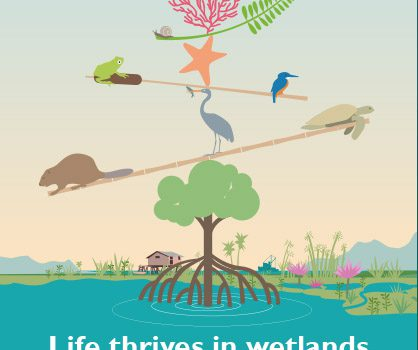 World Wetlands Day 2020, Wetland Biodiversity: Why It matters